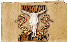Maryland Reptile Farm
